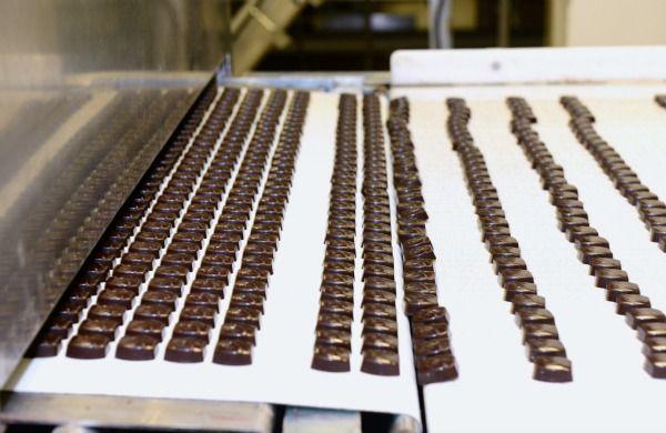 Пищевая ПВХ лента Holzer F WOOL S1 60 W 2.9 ширина 475мм длина 1470мм в кольце заказать