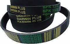 Программа ремней Darwin Plus