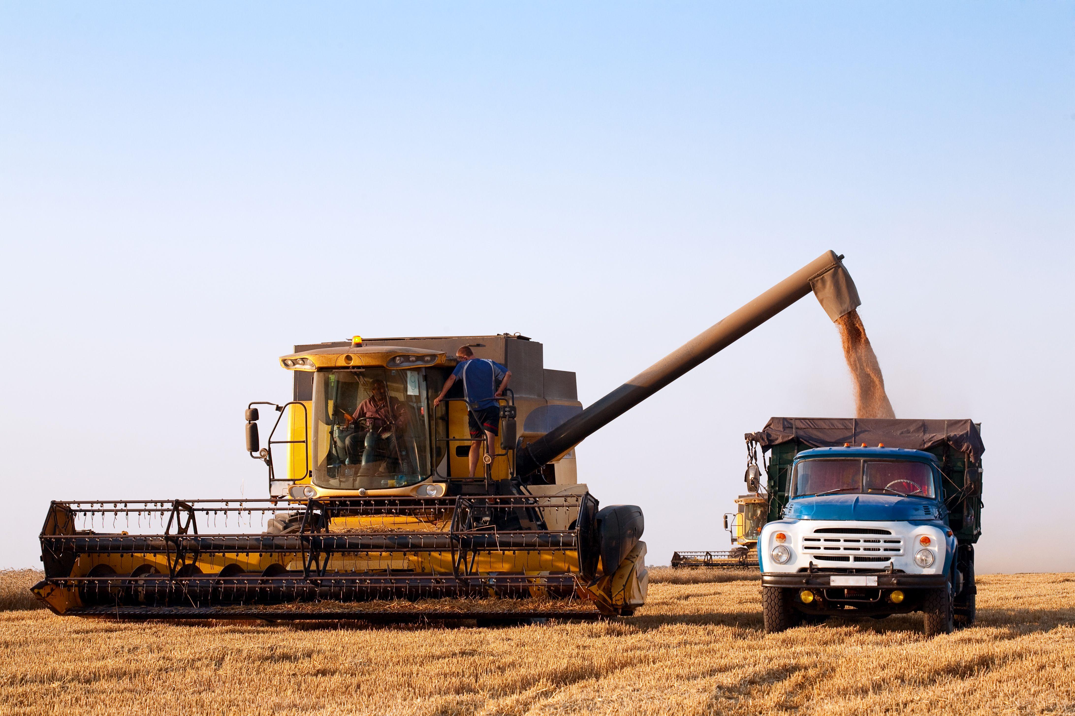 Ремни для зернометателей/прессподборщиков